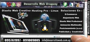 Diseño Web - Tarjeta Personal  De Webmaster