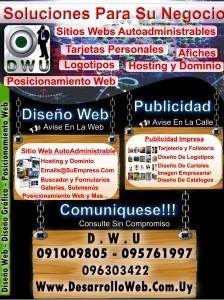 Afiche-Dwu-Diseño Web - Diseño Grafico y Posicionamiento Web