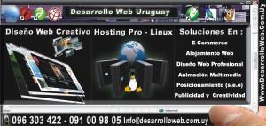webmaster-diseñadorweb